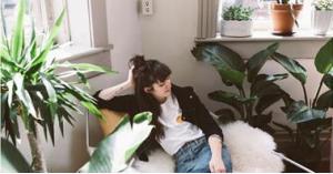 الكشف عن حقيقة فائدة النباتات المنزلية