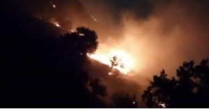حريق هائل في منطقة ارخيم بإربد.. صور