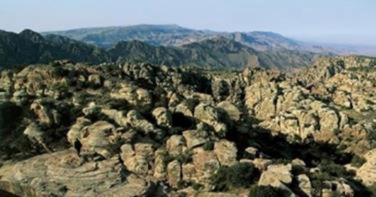 جمعية حماية الطبيعة تنفي وجود تلوث في محمية ضانا