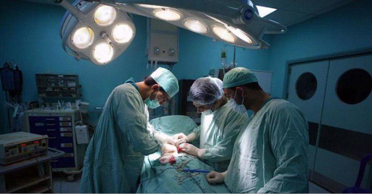 خلال عام.. طبيب أردني يجري 17 عملية زراعة كلى في غزة