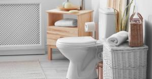 هكذا يمكن إزالة رائحة المرحاض الكريهة بكبش القرنفل