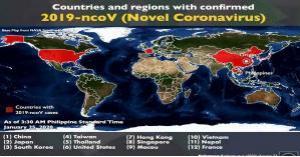 12 دولة يفتك بها فيروس كورونا الجديد حتى الآن