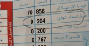 المومني تستهجن تصريحات وزيرة الطاقة الغيره مقنعه