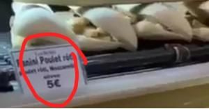 الغذاء والدواء تكشف حقيقة فيديو 'فئران المطعم' الذي يتداوله الاردنيون