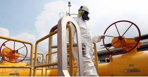 الرواشدة: اعادة ضخ الغاز الطبيعي المصري