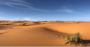 اكتشاف مثير ومفاجئ في الصحراء الكبرى