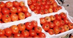 الأردن يوقف تصدير الغذاء الأردن يوقف تصدير الغذاء