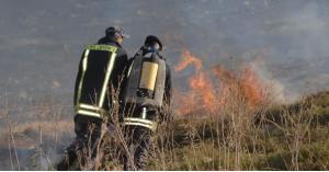 الدفاع المدني يتعامل مع 342 حريق أعشاب وأشجار