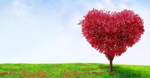 الجغبير يكتب: حب وقوس قزح.. لا مزارع نائية وغانيات ليل