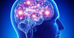 كم يحتاج الدماغ وقتا لحفظ الكلمات الجديدة؟