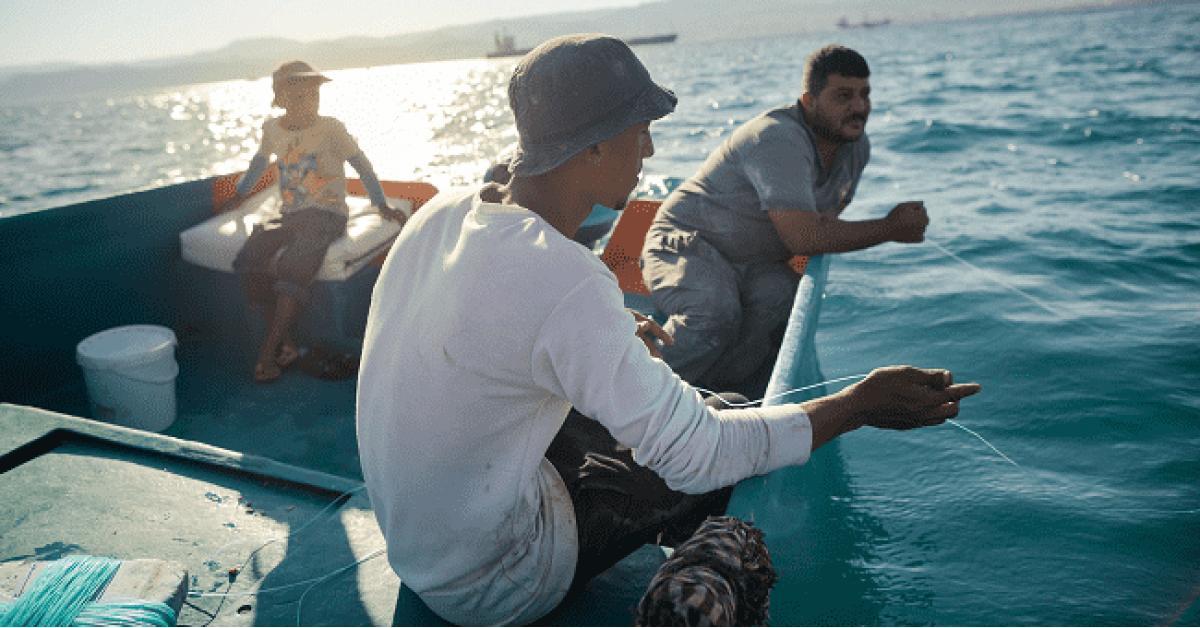 السلطة توقف صيد الاسماك من خليج العقبة خلال هذه الفترة