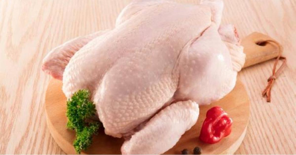بدء حملة مقاطعة الدجاج حتى انخفاض أسعاره