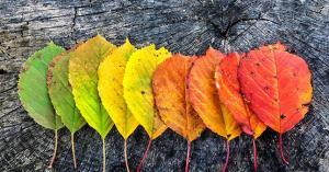 موعد الاعتدال الخريفي في الأردن