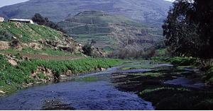 تحديد ثلاثة مصادر للتلوث في قرية جبة بجرش