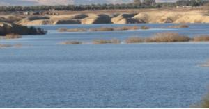المياه: تصريح صادم بشأن مياه الشرب الموجودة في الأردن حالياً