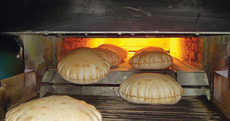 ضبط حشرات ومواد تالفة داخل مخبز