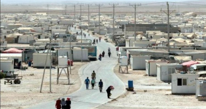 تقرير أممي 80 ولادة أسبوعيا في مخيم الزعتري80 ولادة أسبوعياً في مخيم الزعتري